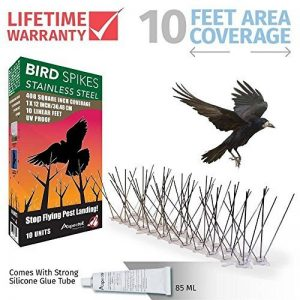 Répulsif Pigeon Kit Pics pour Oiseaux en Acier Inoxydable, 10 pieds (3 m). de la marque Aspectek image 0 produit