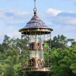 Sauvage Oiseau Feeder Cage À Oiseaux Tourterelle Perroquet Animal De Compagnie Oiseau Automatique Feeder Attire Oiseaux Et Plein Air Observation Des Oiseaux. Cacoffay de la marque Ca.Coffay image 1 produit