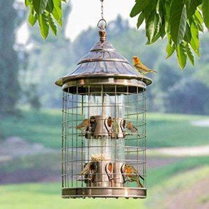 Sauvage Oiseau Feeder Cage À Oiseaux Tourterelle Perroquet Animal De Compagnie Oiseau Automatique Feeder Attire Oiseaux Et Plein Air Observation Des Oiseaux. Cacoffay de la marque Ca.Coffay image 0 produit