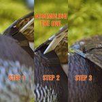 Seicosy Bubo Pest dissuasif avec des ailes mobiles–réaliste peur à oiseaux, rongeurs, nuisibles, Épouvantail–Chouette Pest Control de la marque SEICOSY image 4 produit