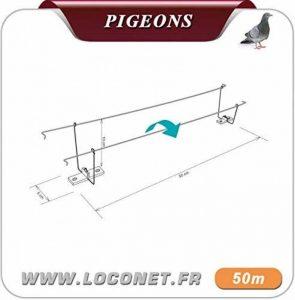 SEL Anti pigeon cable dt bird 2 cable 50m en double de la marque SEL image 0 produit