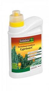 Solabiol SOCYP750 Revitalisant Conifères Cyprèvert Marron 11,9 x 6,8 x 20,3 cm de la marque Solabiol image 0 produit