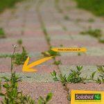 Solabiol SOHERBIOPAL1 Désherbant Polyvalent Jaune Clair 1 L de la marque Solabiol image 2 produit