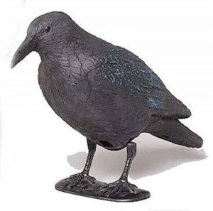 Star 140519 Corbeau noir 38cm avec barreau et pieds en plastique de la marque Star image 0 produit