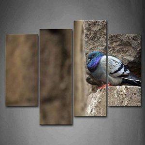 stop pigeon TOP 3 image 0 produit