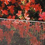 Tenax 06799 Grillage Plastique Gris 1 x 5 m de la marque Tenax image 4 produit