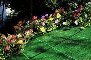Tenax Cover Pro Toiles de Paillage, Vert, 1000 x 0.1 x 125 cm de la marque Tenax image 0 produit