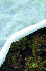 Tenax Ortoclima Plus Voile d'hivernage protecteur Blanc 1000 x 0,1 x 100 cm de la marque Tenax image 0 produit