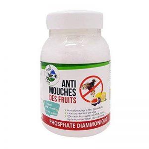 TERRA NOSTRA Phosphate Diammonique Appât mouches des fruits Flacon 500g Utilisable en agriculture biologique de la marque TERRA NOSTRA image 0 produit