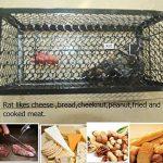 TIFANTI Piège à rat,Piège à Souris - Facile réutilisable Contrôle des Rats Tapette à souris Attrappe Anti Rat Souricière de la marque TIFANTI image 4 produit