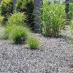 Toile anti-mauvaises herbes 150g/m² indéchirable de qualité professionnelle haute Stabilisation UV 90mx1,6m de la marque Plant-Protex/Texton image 3 produit