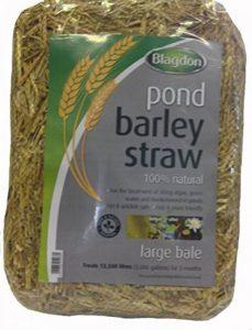 traitement contre les mauvaises herbes TOP 6 image 0 produit