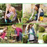 traitement mauvaise herbe gazon TOP 12 image 1 produit