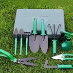traitement mauvaise herbe gazon TOP 12 image 2 produit