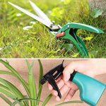 traitement mauvaise herbe gazon TOP 12 image 4 produit