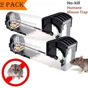 trappe à souris TOP 11 image 0 produit