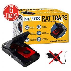 tuer un rat rapidement TOP 2 image 0 produit
