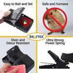 tuer un rat rapidement TOP 2 image 1 produit