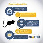 tuer un rat rapidement TOP 2 image 2 produit
