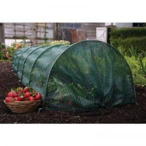 tunnel protection pour plantes TOP 1 image 0 produit