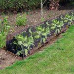 tunnel protection pour plantes TOP 2 image 3 produit