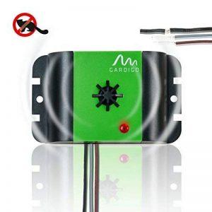 ultrason martre voiture TOP 4 image 0 produit