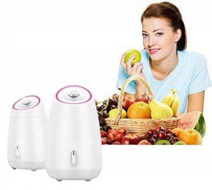 Vapeur facial Spa Nano ionique Hot Mist visage pulvérisateur aromathérapie peut utiliser des fruits et légumes de la marque DLM image 0 produit