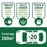 Vitax Green Up Engrais liquide pour pelouse 1l de la marque Vitax Ltd image 2 produit