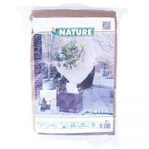 Voile d\'hivernage en polypropylène beige 60gr/m² 2x5m de la marque Nature image 0 produit