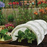 voile protection plantes hiver TOP 2 image 2 produit