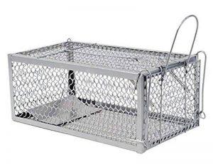 warkhome 1 porte Souris Piège à rat souris Cage pour rongeurs, Live Fer Animal Cage Piège à Best Souris Catcher (Argenté) de la marque WARKHOME image 0 produit