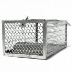 warkhome 1 porte Souris Piège à rat souris Cage pour rongeurs, Live Fer Animal Cage Piège à Best Souris Catcher (Argenté) de la marque WARKHOME image 3 produit