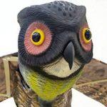 WARKHOME Hibou Anti Pigeons Hibou Anti Oiseaux Épouvantail Décoratif Épouvantail Chouette - Effraie les Oiseaux, Rongeurs, Eloigne Nuisibles de la marque WARKHOME image 1 produit