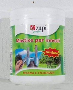 Zapi Mastic de greffages avec cuivre Pot de 500g de la marque zapi image 0 produit